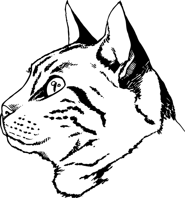 Attentive Kitty Decal