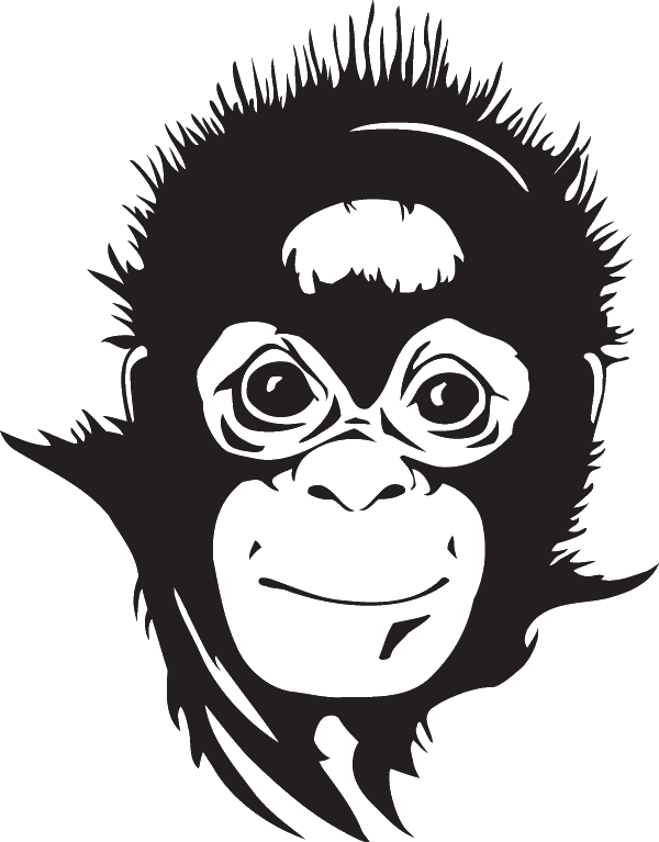 African Chimpanzee Decal