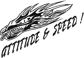 Attitude and Speed