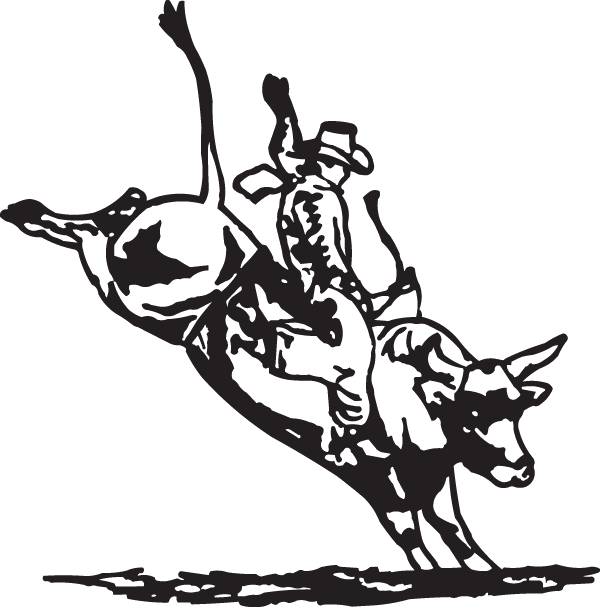 Professional bull riding sticker