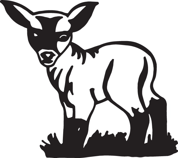 Baby Lamb Decal