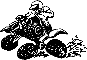 Quad Wheely Decal