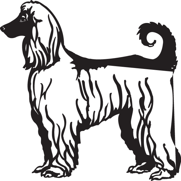 Afghan Hound Decal