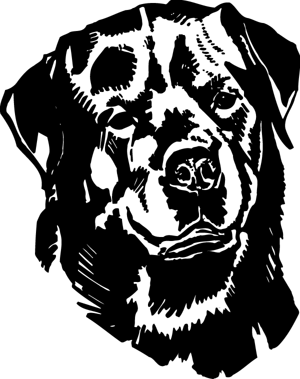 Rottweiler Head View Decal