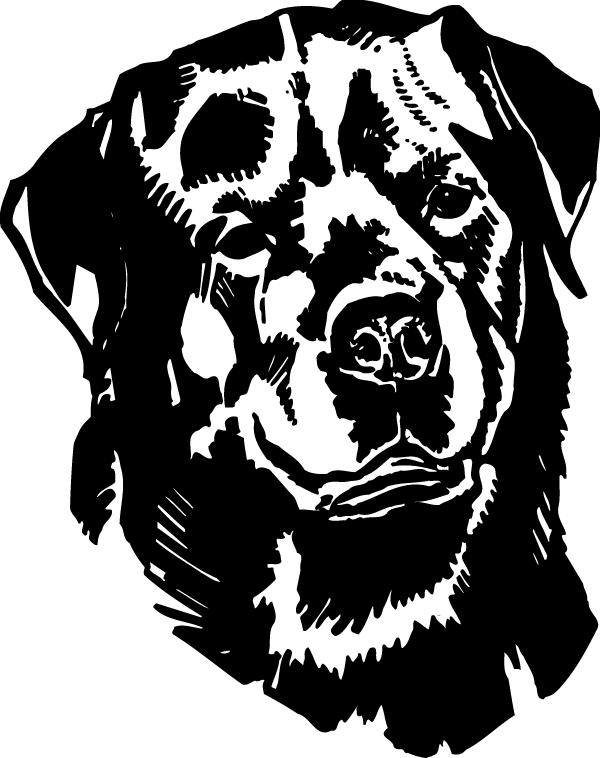 Rottweiler Head View Decal