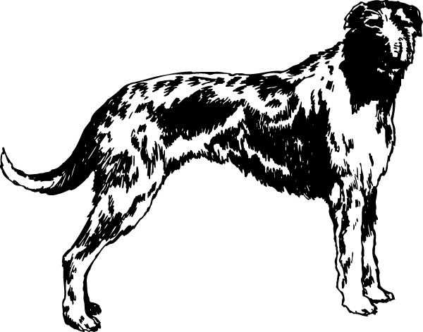 Scottish Deerhound Decal