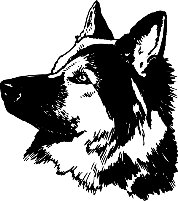 Attentive German Shepherd Decal