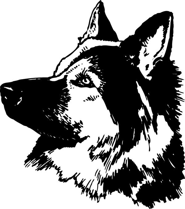 Attentive German Shepherd Decal