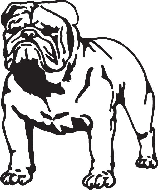 Bull Dog Decal