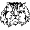 Cat in Charge Decal