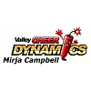 Valley Cheer Dynamics Decal