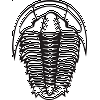 Custom sized: Trilobite Sticker