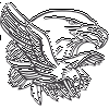 Bald Eagle Tribute Decal