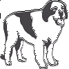Black and White Newfoundland Decal