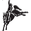 Bronco Rodeo Decal